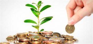 Beberapa Contoh Investasi untuk Pemula