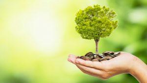 Investasi Jangka Pendek, 3 Tips Jitu Sebelum Melakukannya