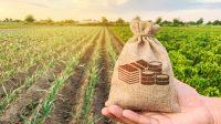 Investasi Tanah atau Saham, Pilih Mana??